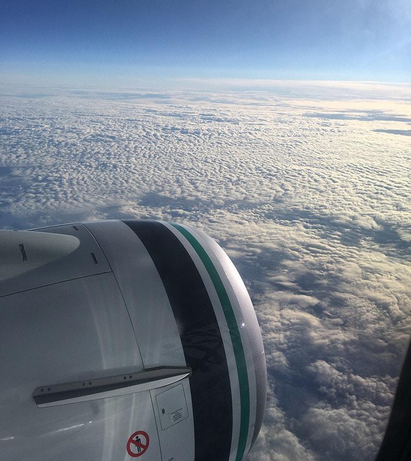 alaska-air-flight-view