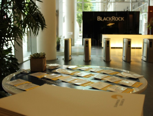 BlackRock and Summer Search